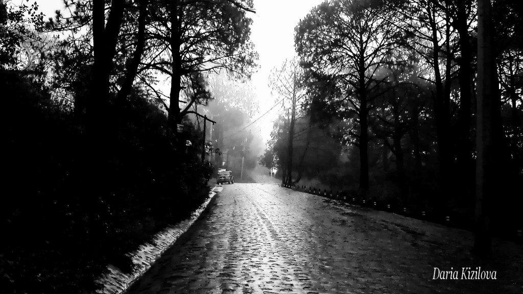 Camino a Mazamitla