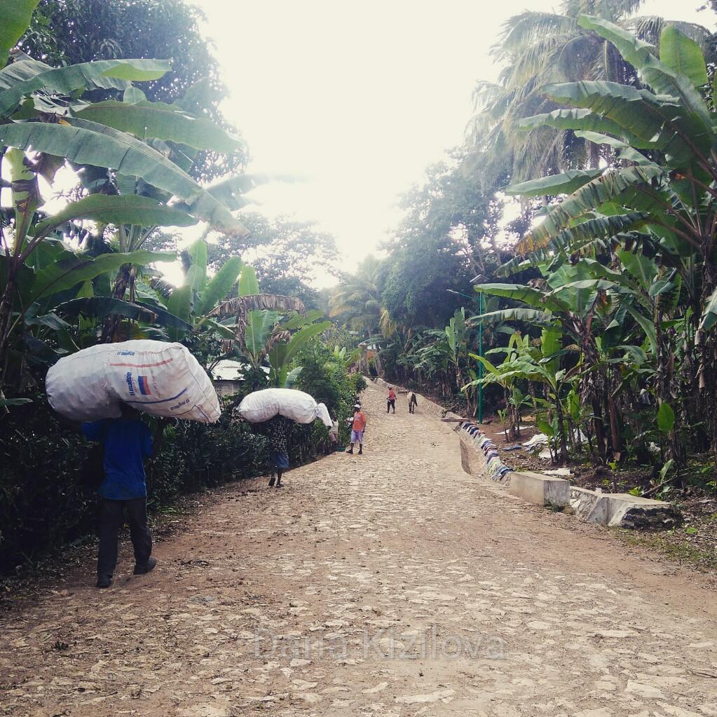 Как Поехать в Гаити