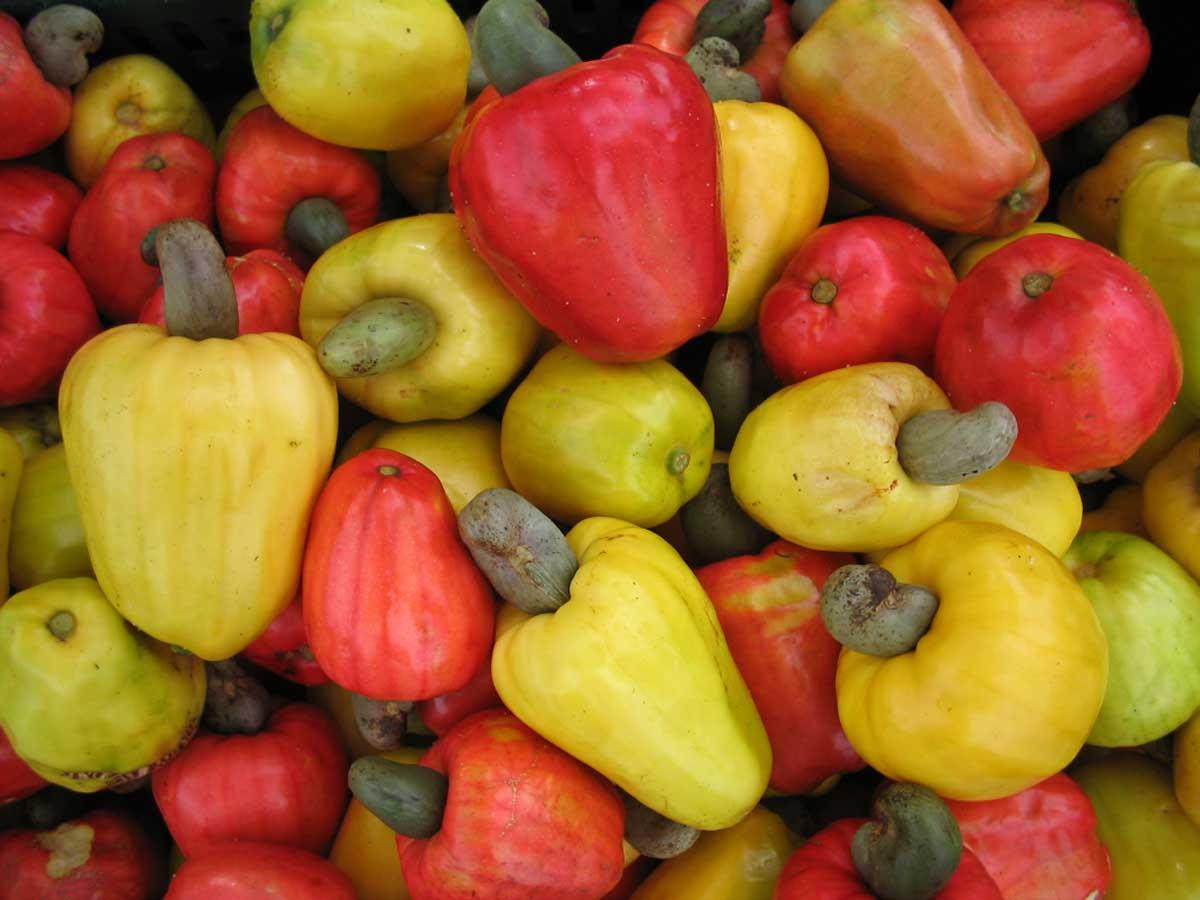 Las frutas m s ex ticas y nutritivas de bras l tour ex tico - Frutas tropicales y exoticas ...