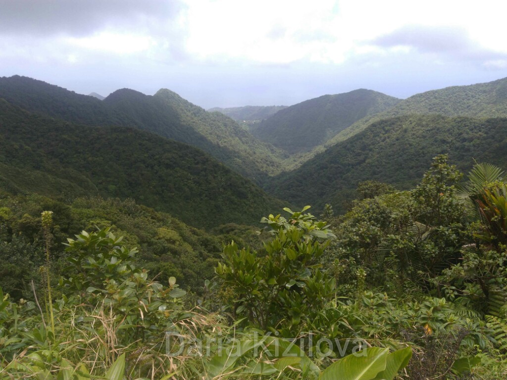 Nature of Dominica