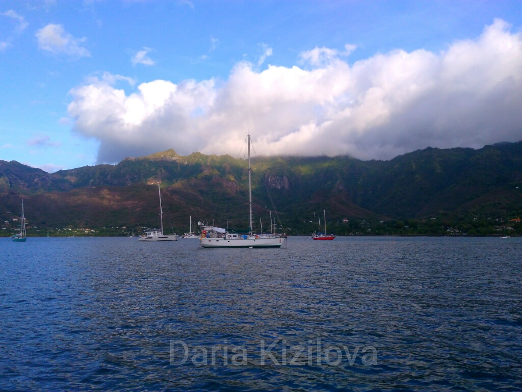 Sea Trip by Boat