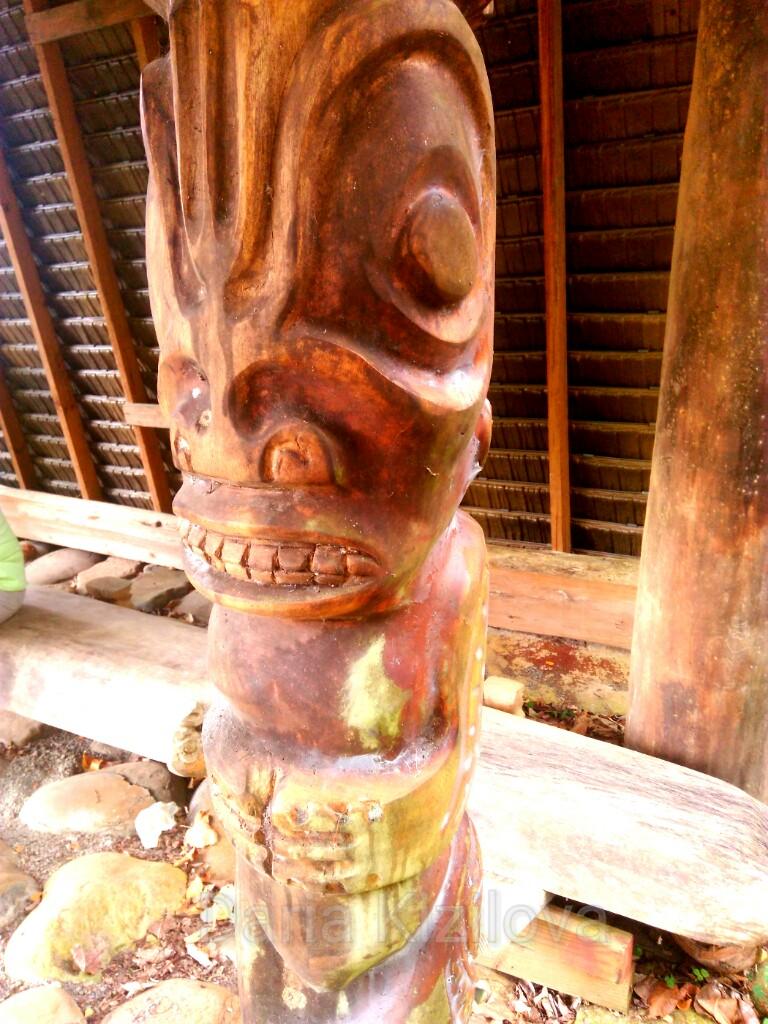 Maori Traditions