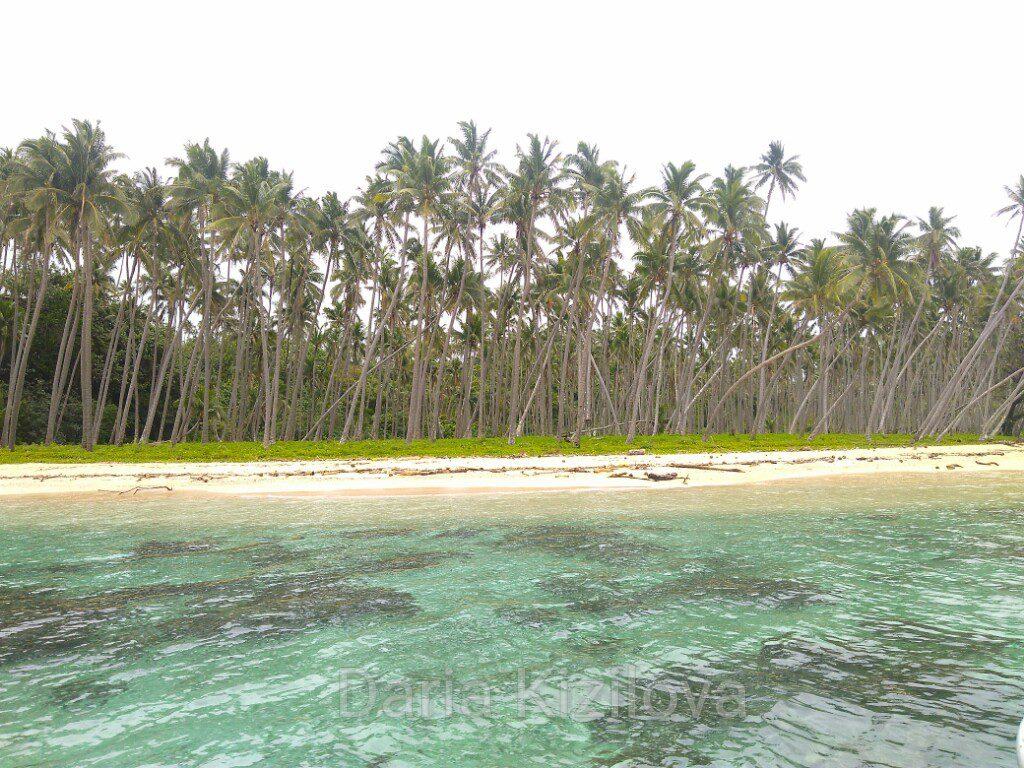 Тавеуни Остров