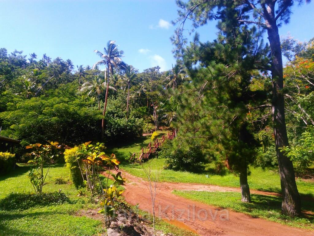 Nature Fiji
