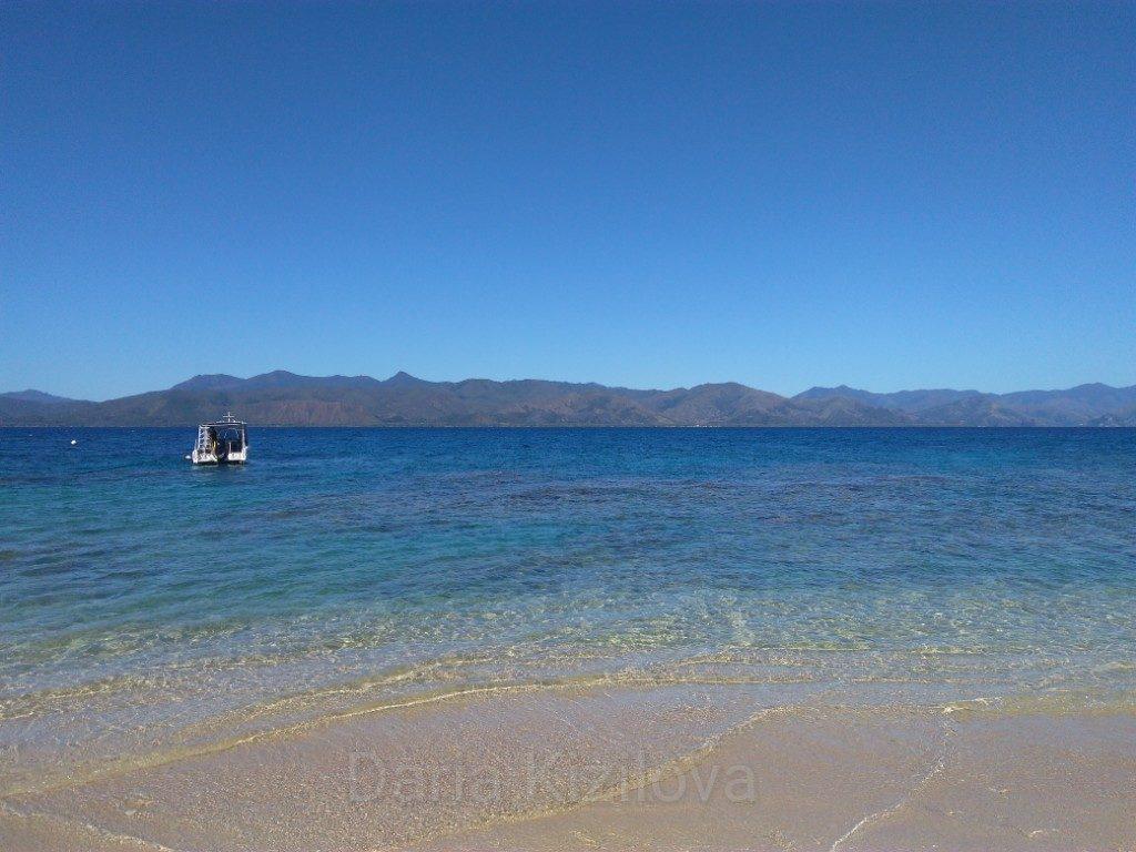 Новая Каледония Рыбы