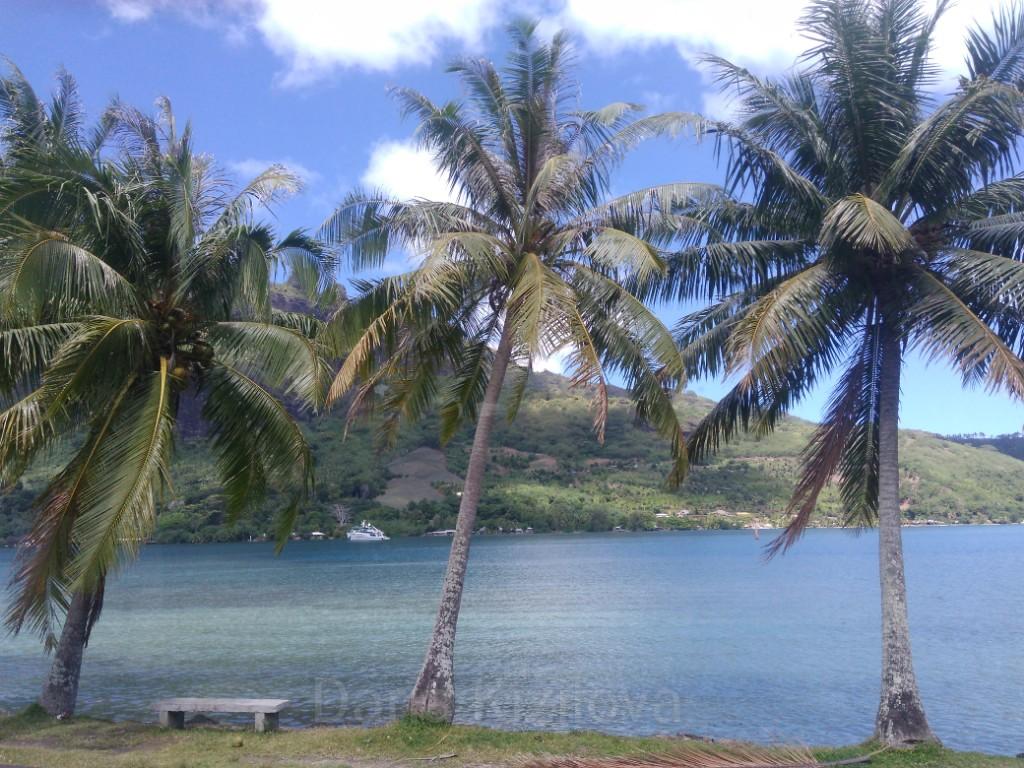 Vida en Polinesia