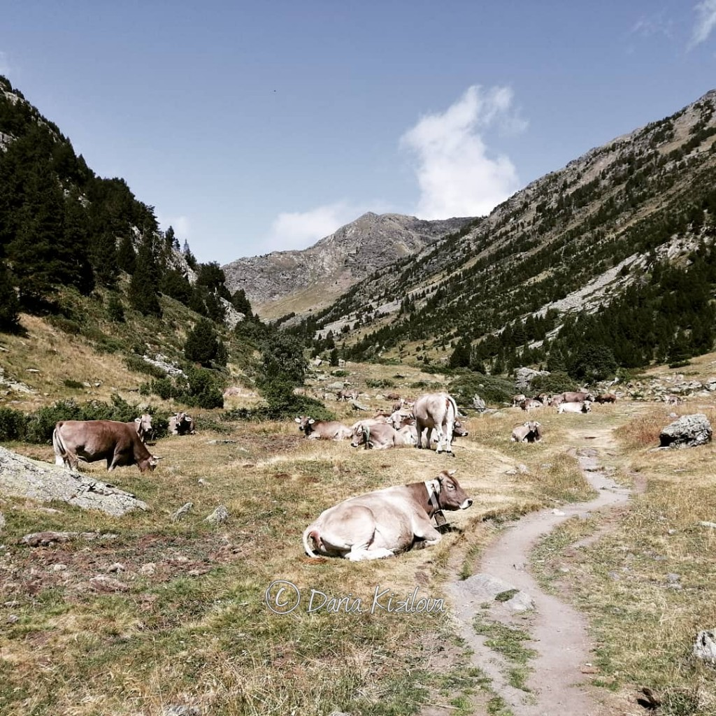 Nature of Andorra