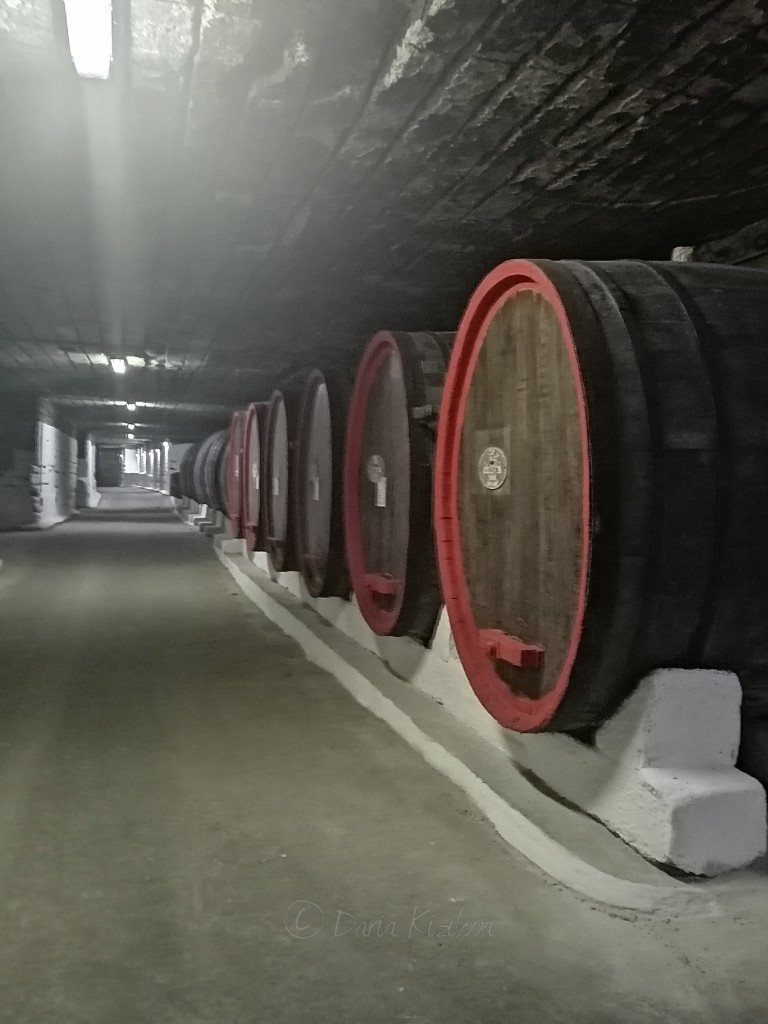 Wine Caves of Winery
