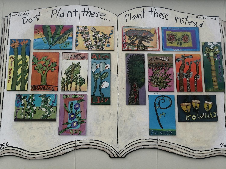 Plants of New Zealand